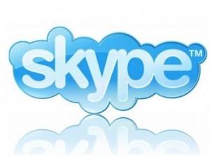 skype, ps vita