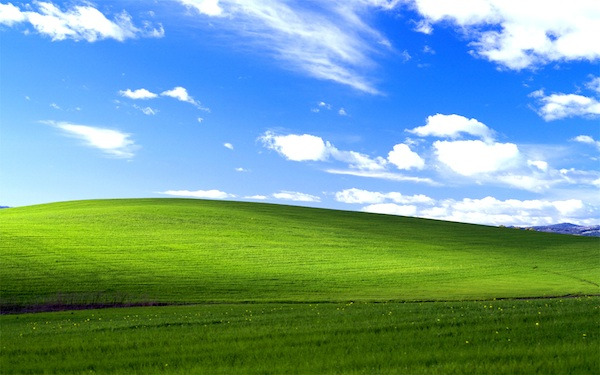 Windows XP cayó un 3%