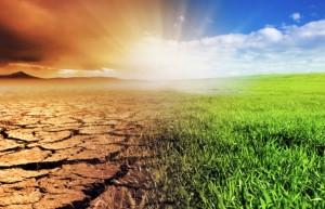 Acciona reclama al G-20 mayor compromiso con el cambio climático