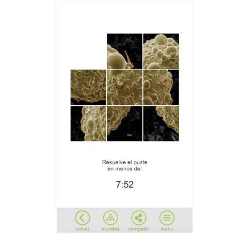 Micromundo, una app con imágenes del microscopio