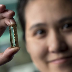 Nanowire battery doctoral candidatB88DF3