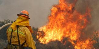 incendio-forestal-ciencia