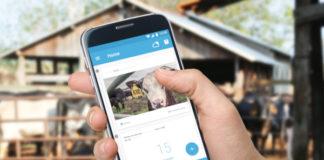 telefonica premia innovacion sostenible