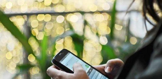 WhatsApp sanción abuso mensajes masivos
