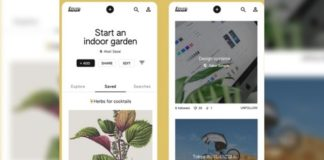 Keen Pinterest Google Inteligencia Artificial